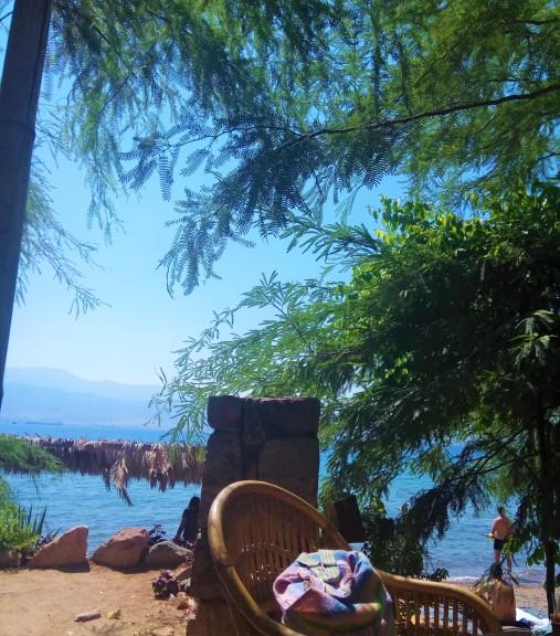 החוף-של-מוש