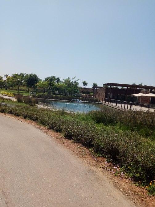 אגם-אריאל-שרון